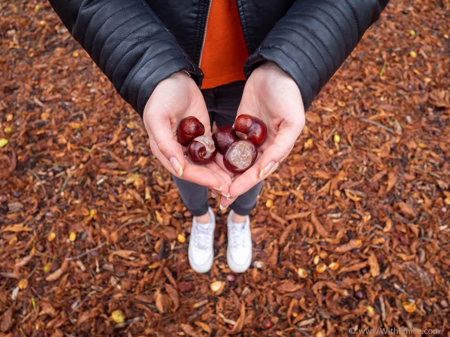 5 façons de garder le moral en automne- WithEmilieBlog
