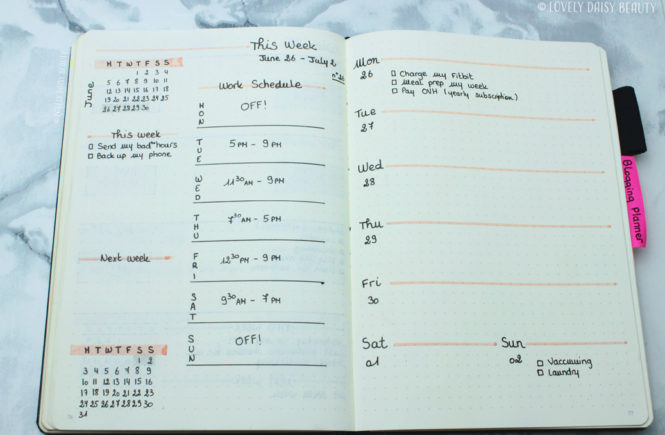 weekly layout bullet journal work schedule to do list 4