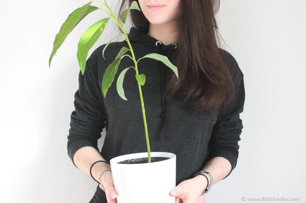 40 façons de réduire son impact écologique WithEmilieBlog