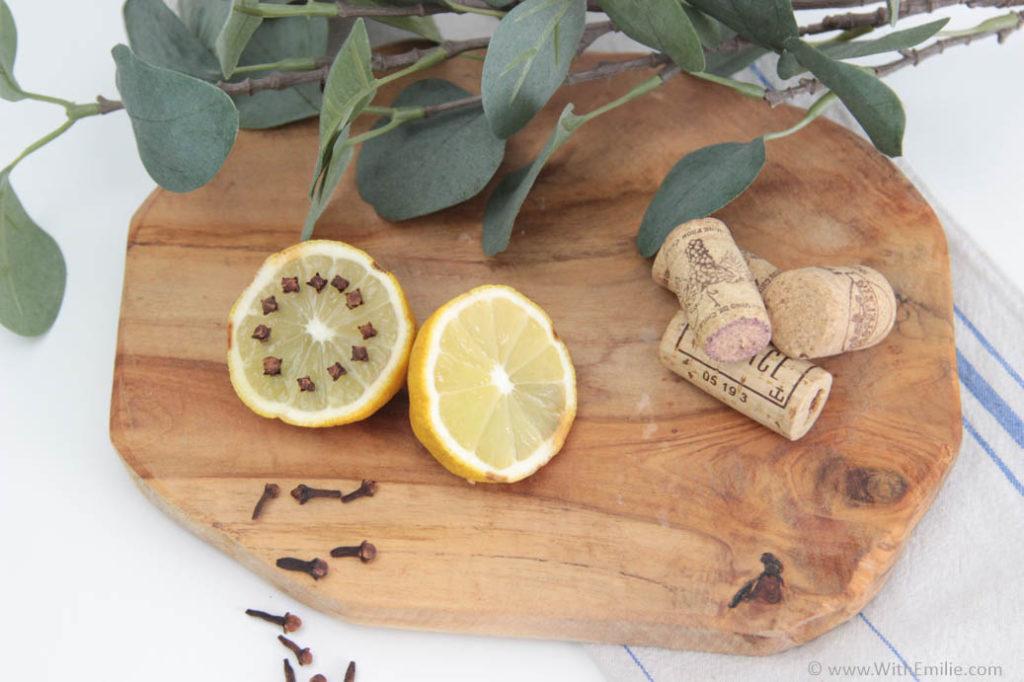 Se débarrasser des moustiques et moucherons - WithEmilieBlog